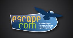 Audit & Conseil : Escape-com